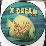X Dream - This Is The Future