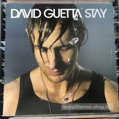 "David Guetta - Stay  (12"", Maxi) (vinyl) bakelit lemez"